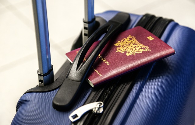 Emigreren